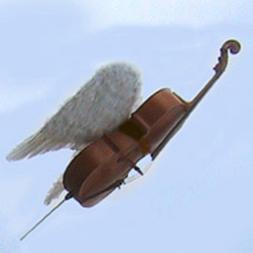 Wild Cello